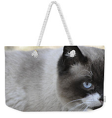 Weekender Tote Bag featuring the photograph Ringtail by Sarah McKoy