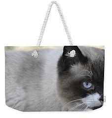 Ringtail Weekender Tote Bag by Sarah McKoy