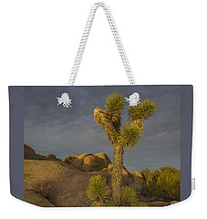 Reaching For The Sky Weekender Tote Bag by James Hammond