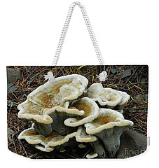 Weekender Tote Bag featuring the photograph Roadside Treasure by Chalet Roome-Rigdon