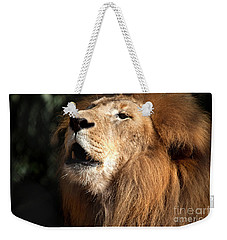Weekender Tote Bag featuring the photograph Roar - African Lion by Meg Rousher