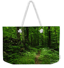 Weekender Tote Bag featuring the photograph Roaring Fork Trail by Debbie Green