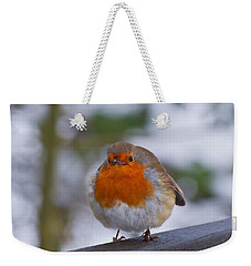 Robin 1 Weekender Tote Bag by Scott Carruthers