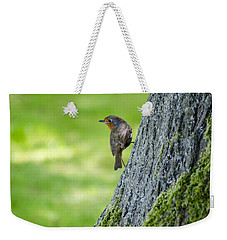 Robin At Rest Weekender Tote Bag by Spikey Mouse Photography