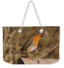 Robin On A Log -2 Weekender Tote Bag