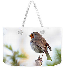 Robin On A Pole Weekender Tote Bag