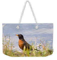 Weekender Tote Bag featuring the photograph Robin Viewing Surroundings by John M Bailey