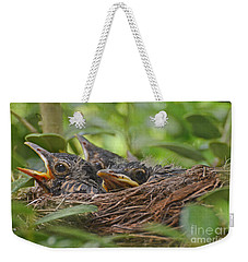 Robins In The Nest Weekender Tote Bag by Debbie Portwood