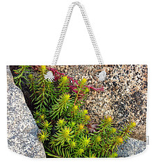 Weekender Tote Bag featuring the photograph Rock Flower by Meghan at FireBonnet Art
