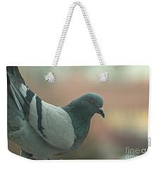 Rock Pigeon Weekender Tote Bag