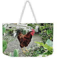 Weekender Tote Bag featuring the photograph Rooster Perch by Jean Goodwin Brooks