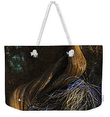 Weekender Tote Bag featuring the photograph Tree Root by Yulia Kazansky