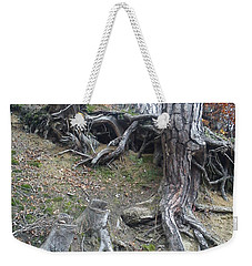 Weekender Tote Bag featuring the painting Roots by Felicia Tica