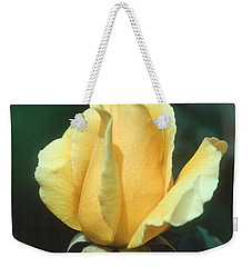 Rose 2 Weekender Tote Bag by Andy Shomock
