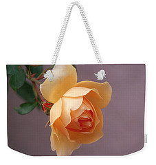 Rose 4 Weekender Tote Bag by Andy Shomock