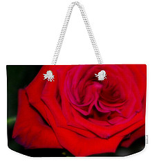 Special Rose For  Valentines Day. Rose. Hearts Weekender Tote Bag