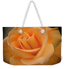 Weekender Tote Bag featuring the photograph Rose by Laurel Powell