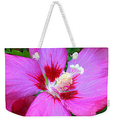 Rose Of Sharon Hibiscus Weekender Tote Bag by Patti Whitten