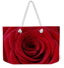Weekender Tote Bag featuring the photograph Rose Red by Shawn Marlow