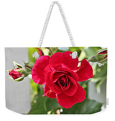 Weekender Tote Bag featuring the photograph Roses Are Red by Joann Copeland-Paul