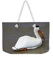 Rough Billed Pelican Weekender Tote Bag by Alyce Taylor