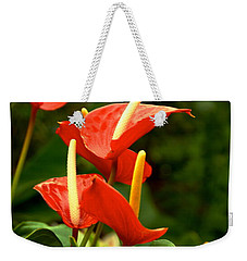 Rousing Reds Weekender Tote Bag by Dee Dee  Whittle