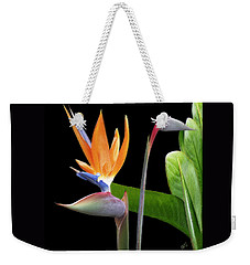 Royal Beauty II - Bird Of Paradise Weekender Tote Bag