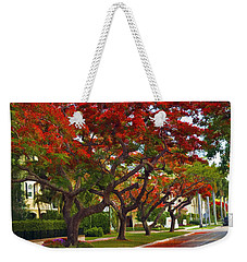 Royal Poinciana Trees In Blooming In South Florida Weekender Tote Bag