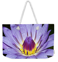 Royal Purple Water Lily #3 Weekender Tote Bag