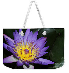 Royal Purple Water Lily #6 Weekender Tote Bag