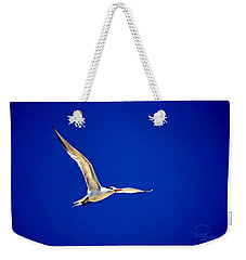 Weekender Tote Bag featuring the photograph Royal Tern 2 by Ludwig Keck