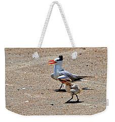Royal Tern With Chick Weekender Tote Bag