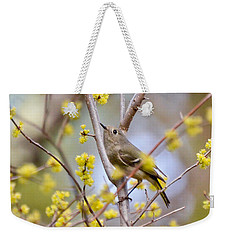 Ruby-crowned Kinglet Weekender Tote Bag by Kerri Farley
