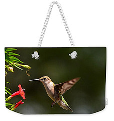Ruby Throat Hummingbird Weekender Tote Bag by Kathy Eickenberg