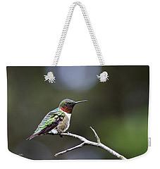 Ruby Throated Hummingbird Spotlight Weekender Tote Bag by Christina Rollo