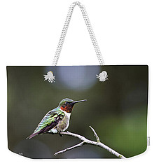 Ruby Throated Hummingbird Spotlight Weekender Tote Bag