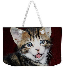 Weekender Tote Bag featuring the photograph Rude Kitten by Terri Waters