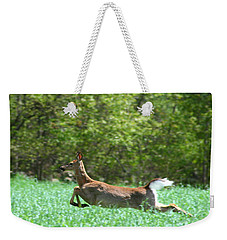 Weekender Tote Bag featuring the photograph Run Forest Run by Neal Eslinger