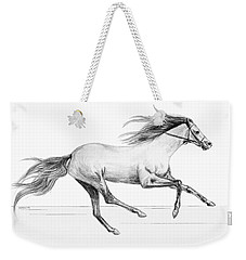 Weekender Tote Bag featuring the drawing Runaway by Sophia Schmierer