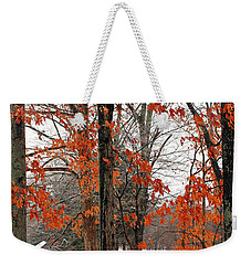 Weekender Tote Bag featuring the photograph Rustic Winter by Todd Blanchard