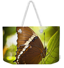 Weekender Tote Bag featuring the photograph Rusty Tip Butterfly by Bradley R Youngberg