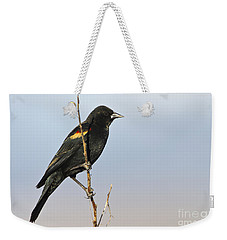 Rwbb On Stick Weekender Tote Bag