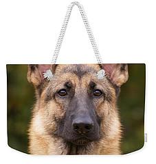 Sable German Shepherd Dog Weekender Tote Bag