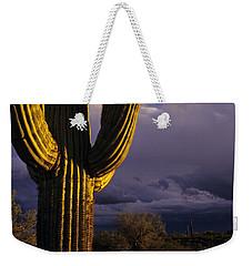 Saguaro Cactus Sunset At Dusk Arizona State Usa Weekender Tote Bag
