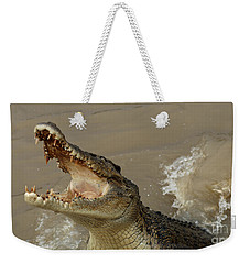 Salt Water Crocodile 2 Weekender Tote Bag by Bob Christopher