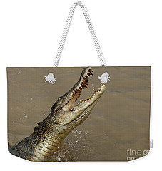 Salt Water Crocodile Australia Weekender Tote Bag by Bob Christopher