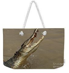 Salt Water Crocodile Australia Weekender Tote Bag by Bob Christopher