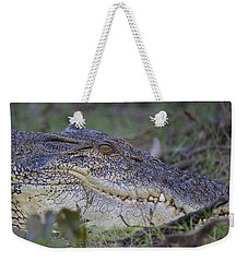 Saltwater Crocodile Weekender Tote Bag by Venetia Featherstone-Witty