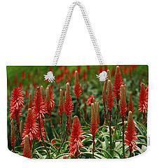 Weekender Tote Bag featuring the photograph La Jolla Spring by John F Tsumas