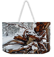 Weekender Tote Bag featuring the photograph San Jacinto Fallen Tree by Kyle Hanson